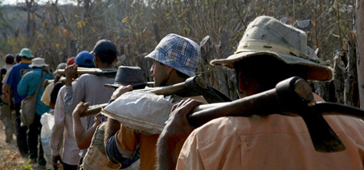 Ações de combate ao trabalho escravo estão ameaçadas